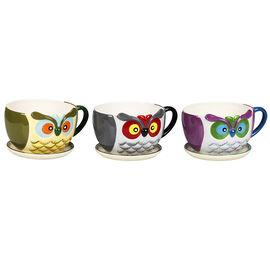Details Owl Planter - Assorted